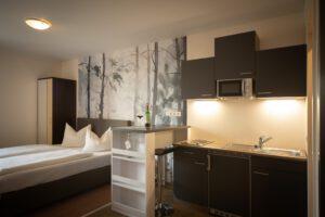 Apartment mit Küchenzeile - Bergwirtschaft Wilder Mann (bei Dresden)